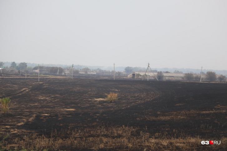 Пламя уничтожило огромное поле