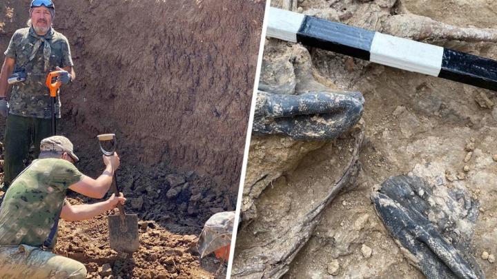 СК начал работать на раскопках братской могилы в Сальске, где нацисты расстреляли 3,5 тысячи дончан