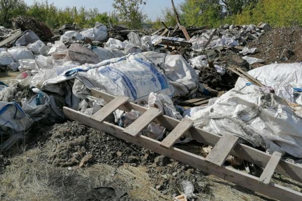 Среди строительного мусора находились трупы животных