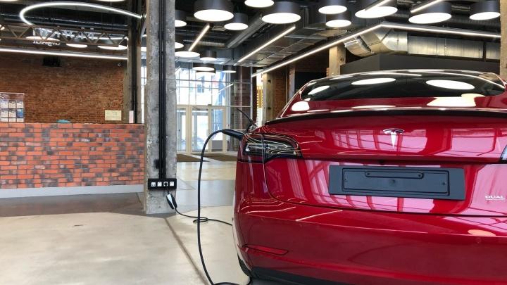 Прокатиться на Tesla и узнать о новых технологиях: в Перми пройдет Electric Vehicle Weekend