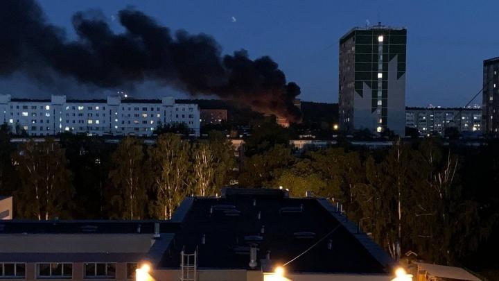 Огонь бушевал в разных районах до поздней ночи: Екатеринбург из-за тополиного пуха накрыло волной пожаров