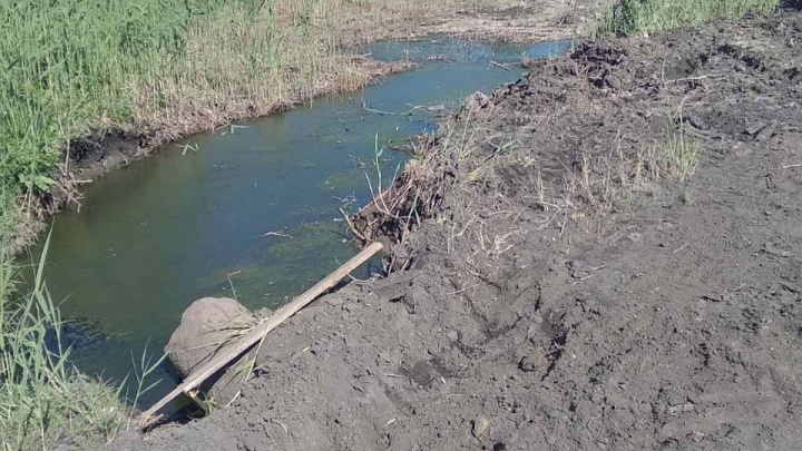 «Вся деревня нюхает»: жители села под Курганом сообщили о проблемах с канализацией