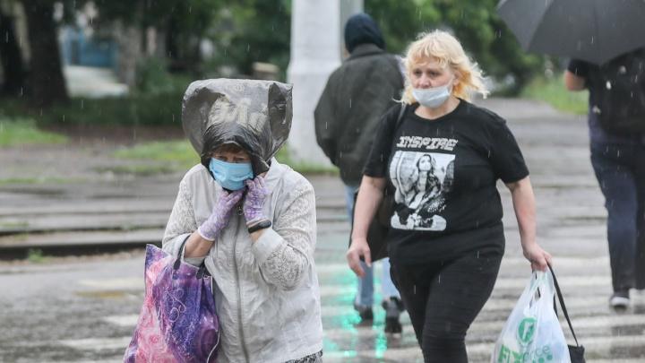 Не Волгоград, а какие-то субтропики: смотрим погоду в городе до конца недели