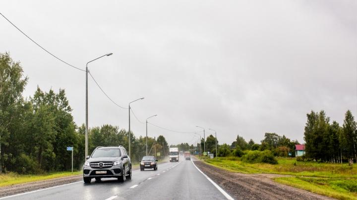 Водитель погиб на месте: в Ярославской области легковушка столкнулась с лосем