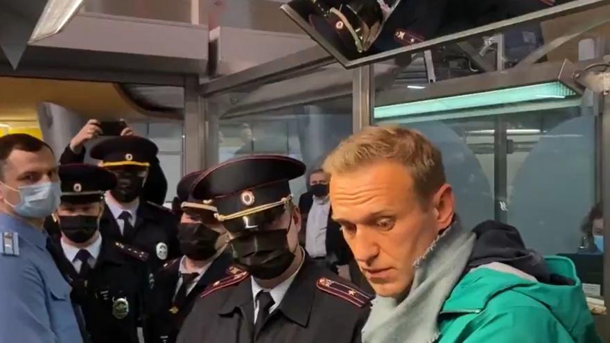Навального задержали сразу после того, как он прилетел в Россию