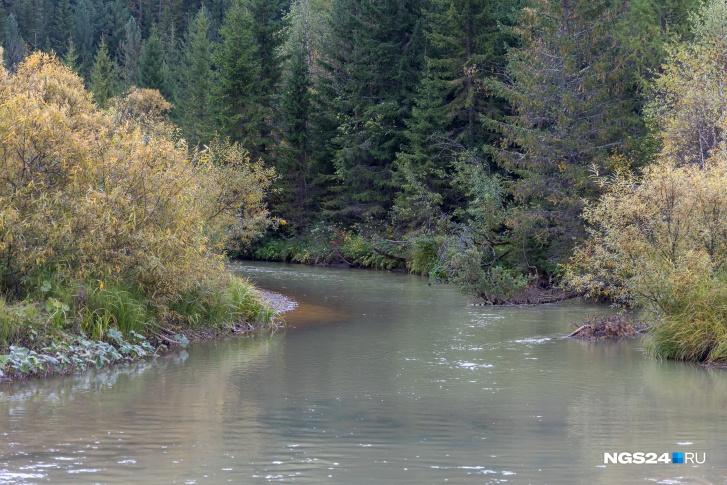 Река серо-голубого цвета — и это она еще чистая