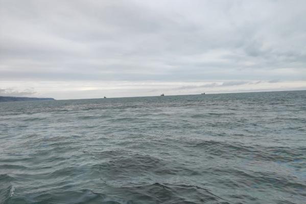 В акватории Черного моря нашли пятна нефти