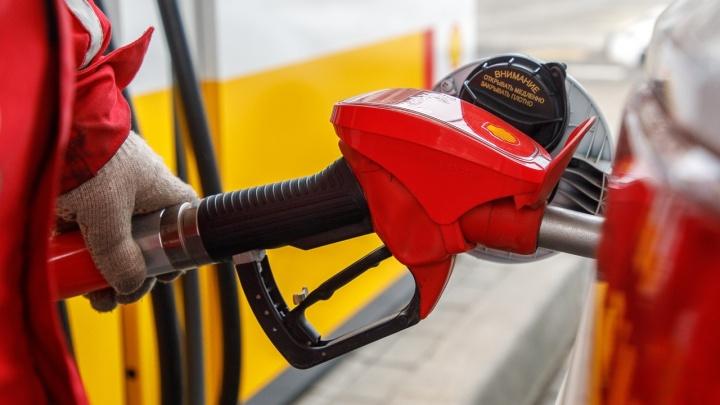 Статистика этого не заметила: в Волгограде вновь выросли цены на бензин