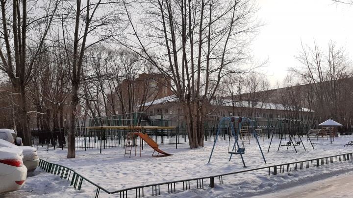 Тюменцы просят городские власти обрезать деревья. Что? Да!