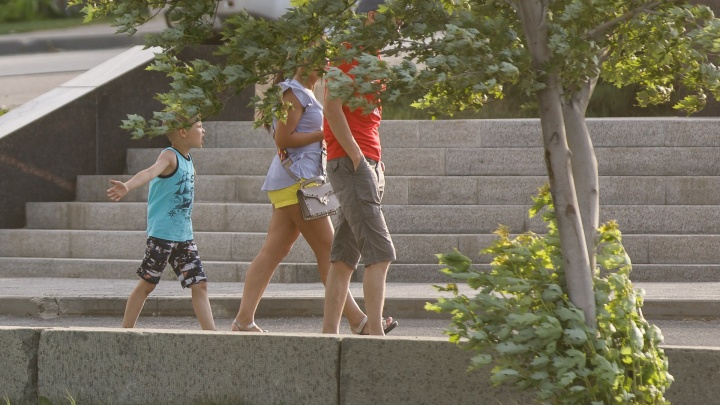 Достанется всем: синоптики предупредили волгоградцев о граде и шквалистом ветре в 30-градусную жару