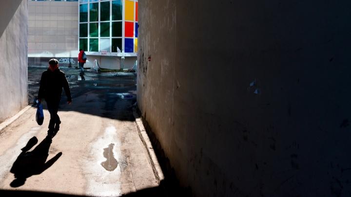 Лучше не гулять и закрыть окна: МЧС предупреждает о сильном ветре в Архангельске