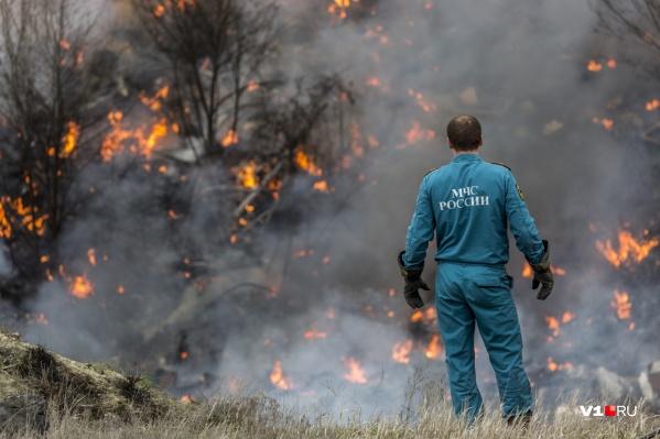 107 населенных пунктов и организаций попали в список объектов, подверженных угрозе лесных пожаров