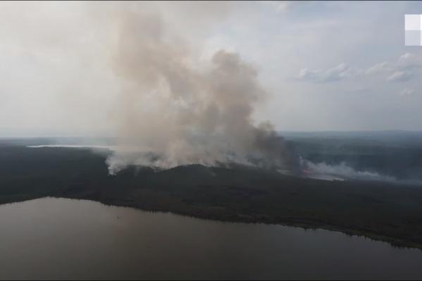 За последние сутки площадь лесного пожара не увеличилась