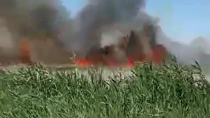 Это похоже на апокалипсис: под Волгоградом рядом с жилыми домами бушует пожар в зарослях камыша