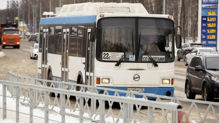Как найти свой автобус в новой транспортной схеме: инструкция