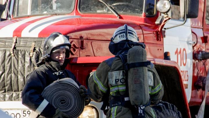 Площадь пожара — более тысячи квадратных метров: в Прикамье загорелась птицефабрика «Чайковская»