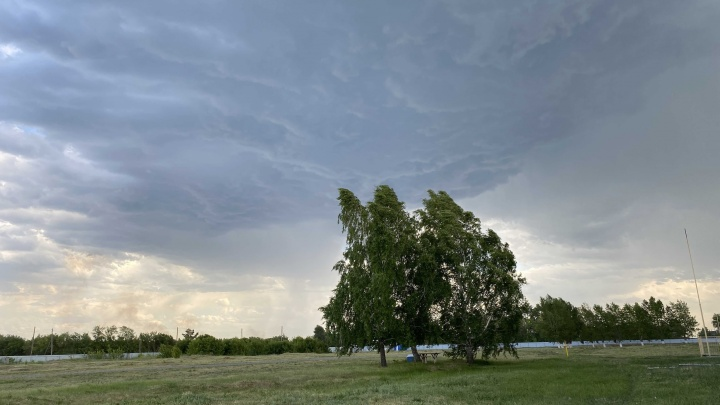 В Курганской области ожидается облачная и местами дождливая неделя