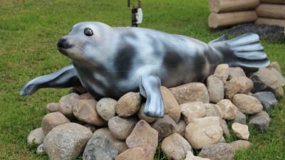 Отпечаток Арктики: у здания УФСИН в Архангельске установили фигуру гренландского тюленя