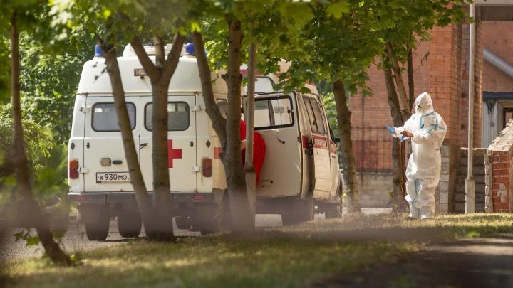Новый пик: количество заболевших коронавирусом ярославцев в июле достигло максимума с начала пандемии