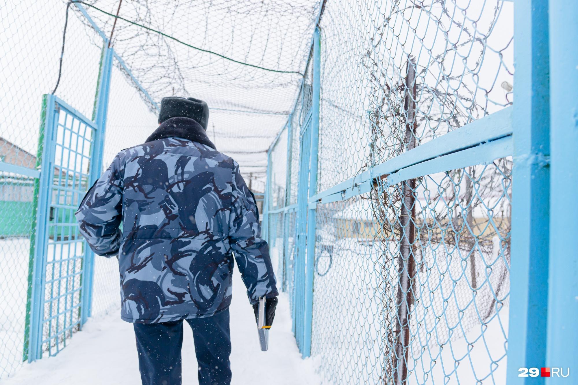 Петербуржец сидит в колонии у деревни Данилово — это Холмогорский район Архангельской области