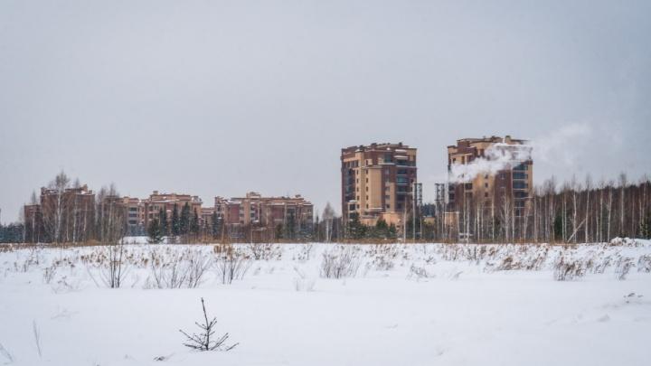 Рядом с элитным «Кедровым» построят многоэтажный дом — жители скандалили из-за этой стройки