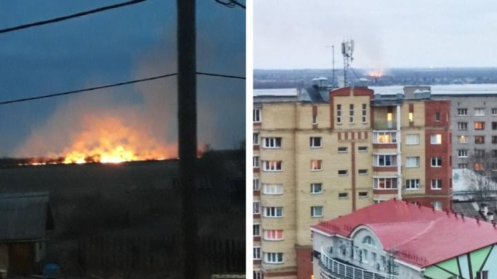 Пал травы на Кегострове: огонь виден из центра Архангельска