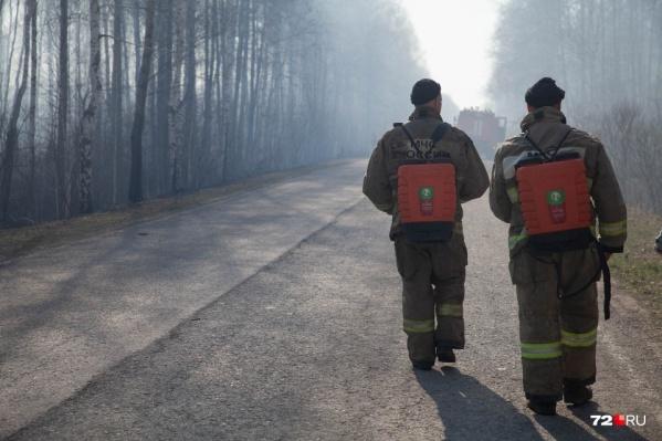 Ежедневно в сводках появляются данные о новых природных пожарах. В последние дни к ним добавились еще возгорания тополиного пуха по вине людей