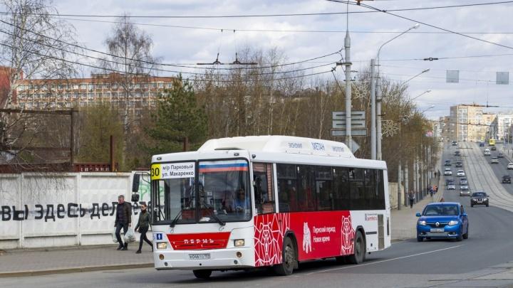 В Перми автобусный маршрут № 30 продлят до микрорайона Садового