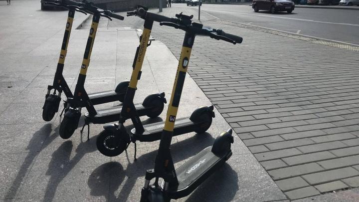 «Это средство мобильности»: в Красноярск пришел крупный федеральный кикшеринг