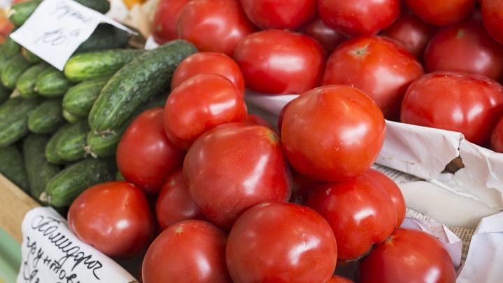 Не останемся ли мы без овощей из-за продолжительной жары: мнения ярославских специалистов