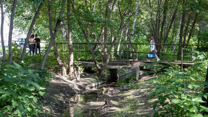 В Новосибирске построят парк в американском стиле на берегу забытой речки — смотрим, что там сейчас