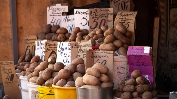Министр сельского хозяйства объяснил заоблачную цену на картофель в Ростове