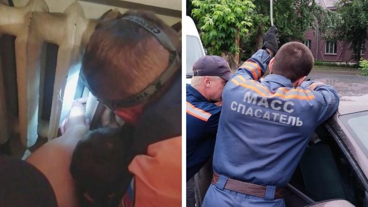 Доставали из батареи, машины и запертых квартир: в Новосибирске за сутки спасли пять малышей