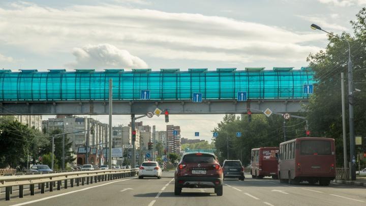 «У нас водят не нагло, а глупо»: водители ответили активисту, сравнившему Ярославль и Казань