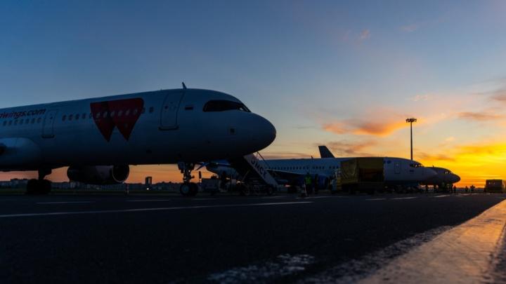 В омском аэропорту точечно отремонтируют асфальт за 84 миллиона рублей