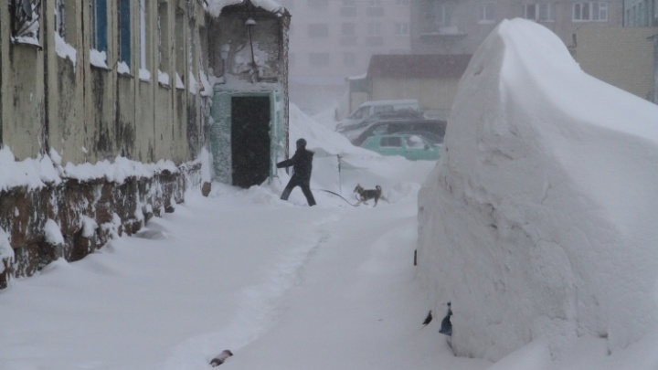 «Люди забыли, что такое человеческая зима»: что случилось с погодой в России и какой будет весна