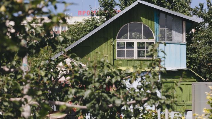 Конь в яблонях, заросли вишни и шикарные цветники: гуляем по СНТ в центре Северо-Запада Челябинска