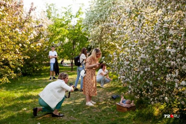 Узнали одну из самых популярных точек для фотосессий? Это Александровский сад в окрестностях улицы Профсоюзной <br>