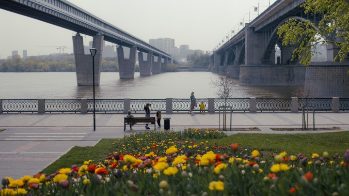 Город похорошел: в Новосибирске начали распускаться цветы и зеленеть деревья. 11 теплых кадров