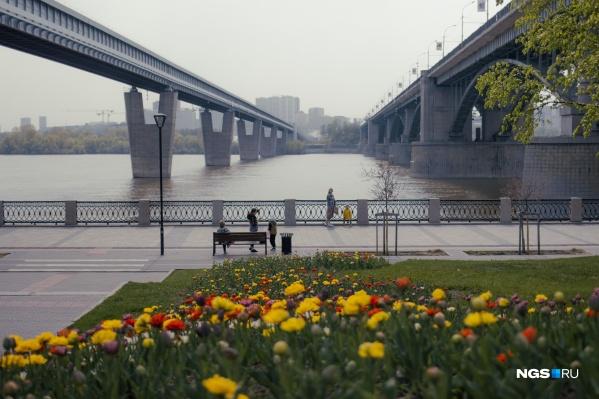На набережной уже распустились тюльпаны и вовсю гуляют люди