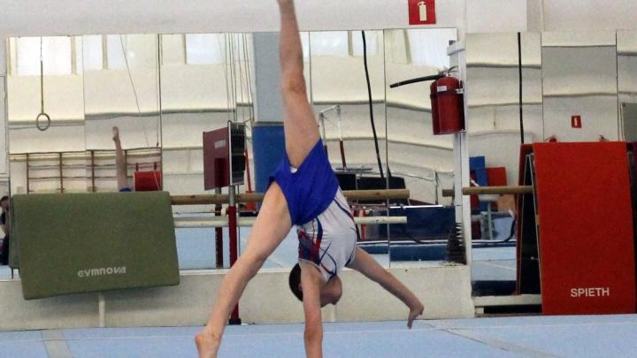 Родители гимнастов попросили вернуть тренировки для профессиональных спортсменов