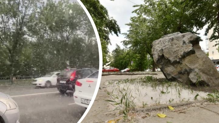 В администрации Екатеринбурга ответили, почему ничего не делают с тополями