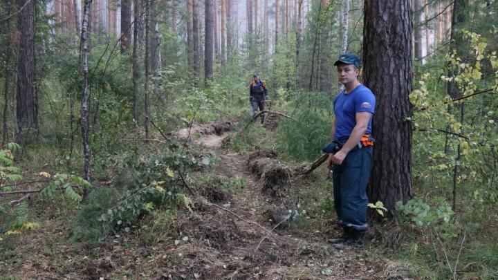 Спасатели не пускают лесной пожар к Решётам, но не могут погасить пламя