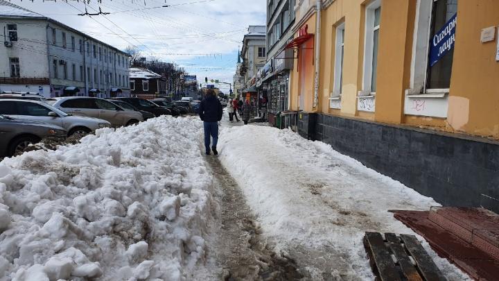 «Мы не справились»: власти Ярославля нашли оправдания, почему не смогли очистить город