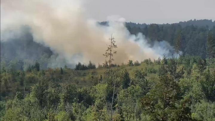 «Надышались дымом до полуобморочного состояния»: что рассказали тольяттинцы, которые живут в нескольких шагах от лесного пожара