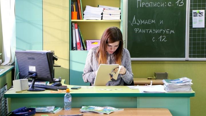 Букеты из орехов и чайные наборы. Смотрим идеи для подарков на День учителя в Нижнем Новгороде