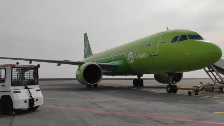 Все билеты проданы: в аэропорту Волгограда готовятся встречать первый рейс из Баку