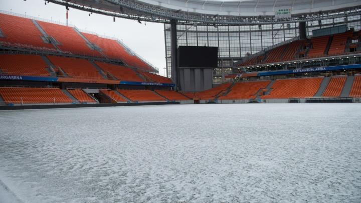 «Екатеринбург Арена» потратит десятки миллионов на лампочки для футбольного газона