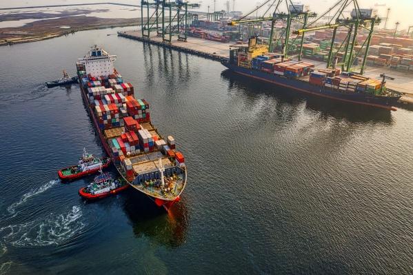 Международная торговля — это не так сложно, если пользоваться специализированными сервисами тамо