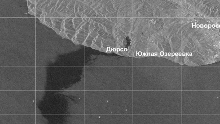 Правительство назвало причину разлива нефти в Новороссийске и решило проверить все порты